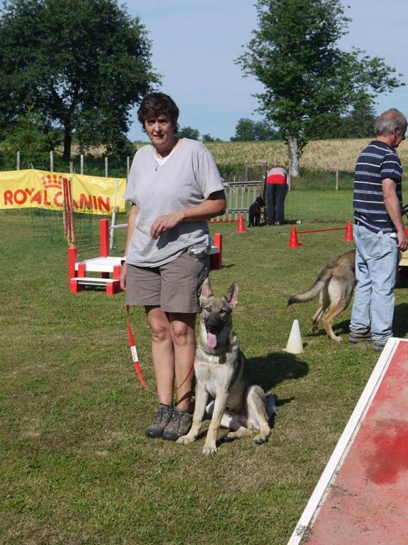 Ecole du chien - 20 juin 2015 - 1