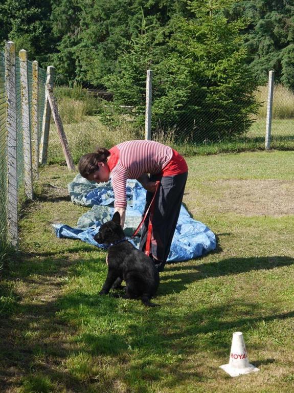 Ecole du chien - 20 juin 2015 - 5